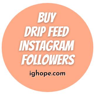 Buy Drip Feed Instagram Followers
